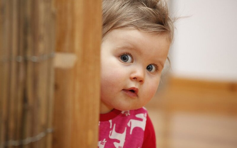 Нервно-психическое развитие ребенка